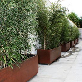 Corten Garden Planters used as a fence screening